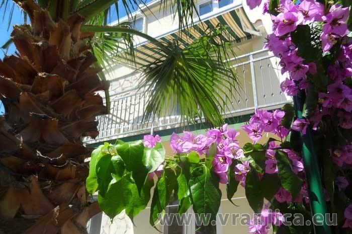 https://www.vranjica.eu/produkty_fotogalerie/apartman-branko-okrug-gornji-v-6322.jpg