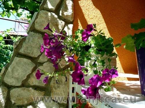 https://www.vranjica.eu/produkty_fotogalerie/apartman-mila-v-1414.jpg